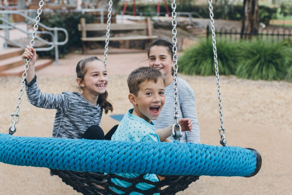Oddies Creek Playspace swing