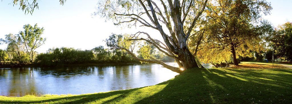 Murray River at Noreuil Park